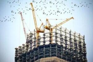Груб строеж цена